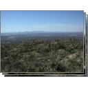 Saguaro Nat'l Park